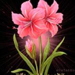 Рисунок профиля (Елена Пляскина)